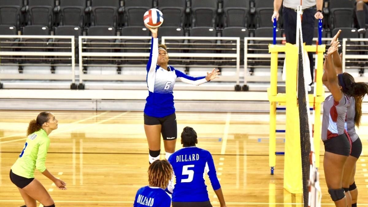 Dillard Volleyball