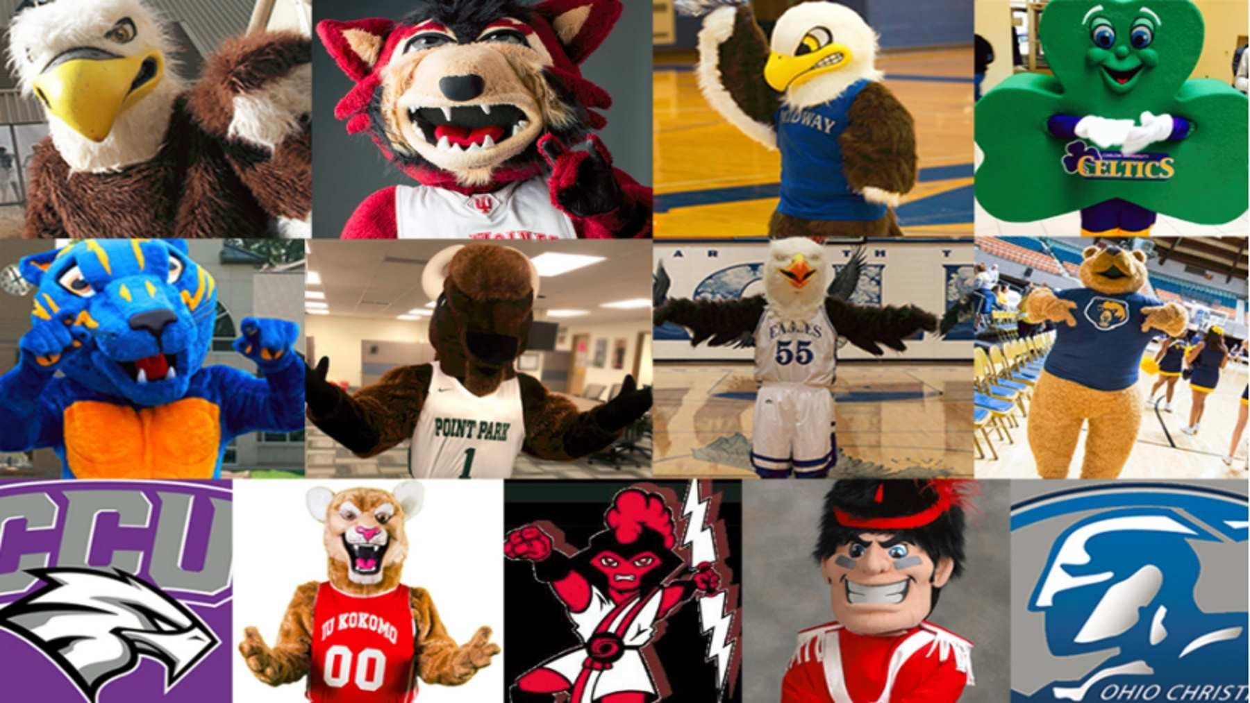 Albany University Mascot