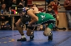46th District Wrestling Meet Photo