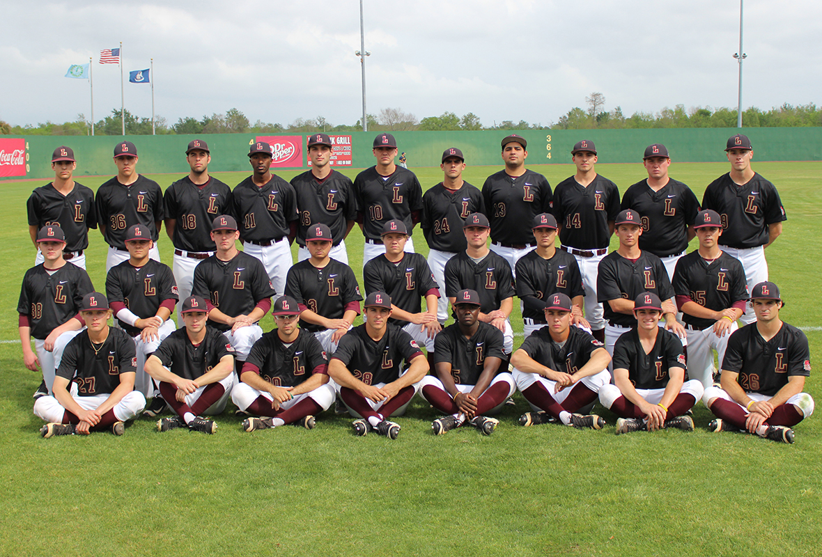 2017 Baseball Team Photo