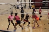 48th Volleyball Summer Camp Photo