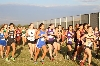 24th Timbercreek Falcon Invitational Photo