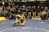 13th State Wrestling Meet Photo