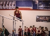 41st Regional Gymnastics Meet Photo