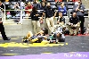 2nd Girl's Wrestling State Championship Photo