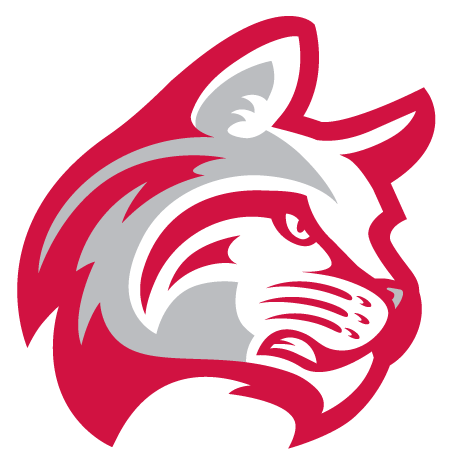 f19c6dd17af76 Indiana Wesleyan University Athletic Department Athletics