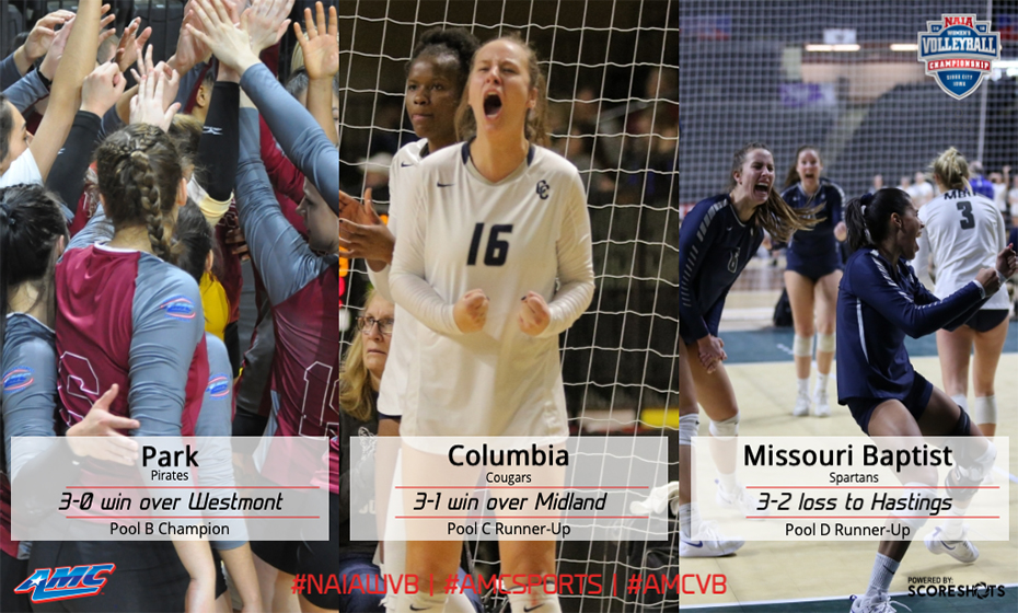 American Midwest Conference - 2015 Volleyball