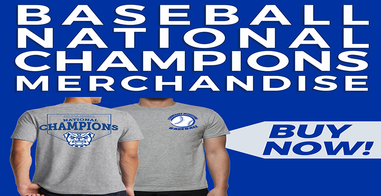 Tennessee Wesleyan University - 2020 Baseball