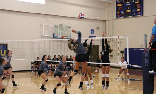 Erin Clark 2019 Volleyball Roster | Embry-Riddle Aeronautic